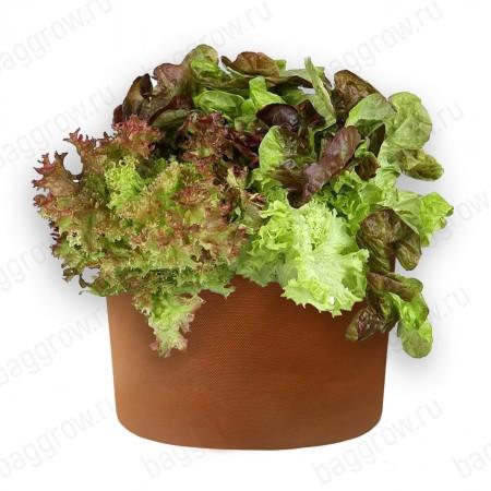 Гроубэг для салата и зелени L
